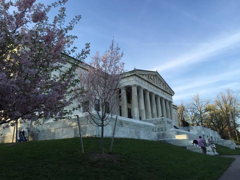 Cherry Blossoms Festival in Buffalo, New York