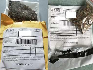 У США з'ясували, що за насіння було у загадкових посилках з Китаю