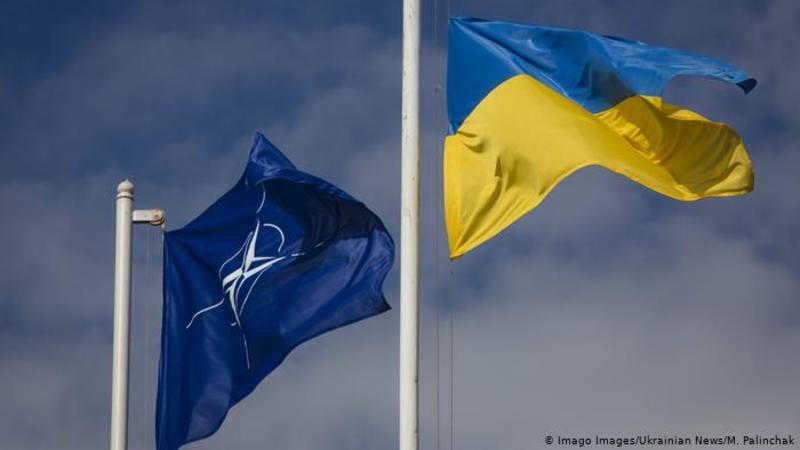 США обговорили ситуацію в Україні з партнерами по НАТО