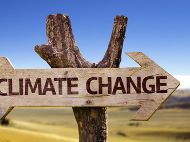 Пандемія не уповільнила швидкість зміни клімату - ООН