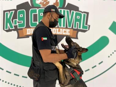 Коронавірус: в аеропортах ОАЕ інфікованих шукають собаки