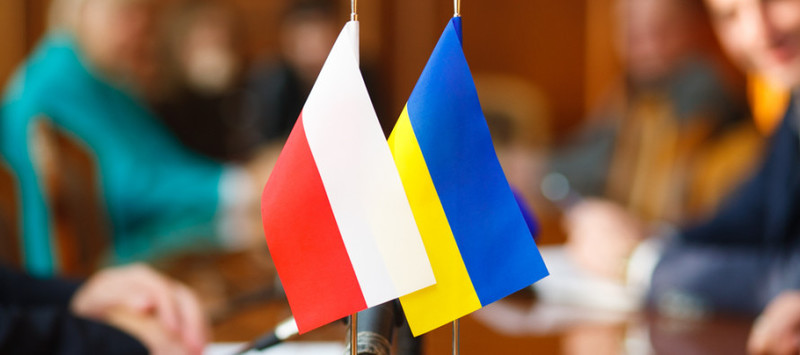 В Україну приїдуть представники польських університетів