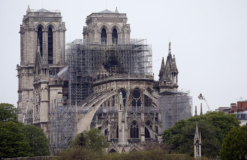 Для ремонту Нотр-Даму де Парі зрубають тисячу 100-літніх дубів