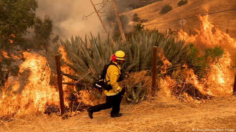 На західному узбережжі США й надалі вирують потужні пожежі