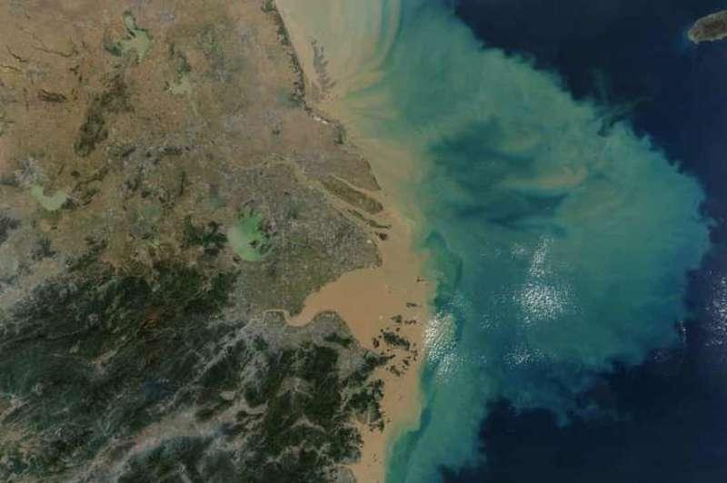 Температура океану досягла рекордних значень