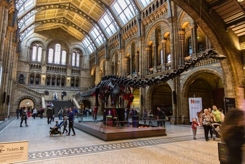 Google запустив онлайн-екскурсії по 50 музеях світу