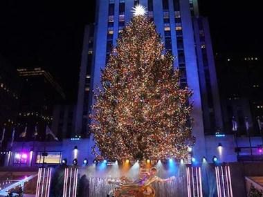 У Нью-Йорку відкрили головну ялинку США
