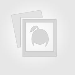 """Адепти """"русского мира"""" масово тікають у Росію"""